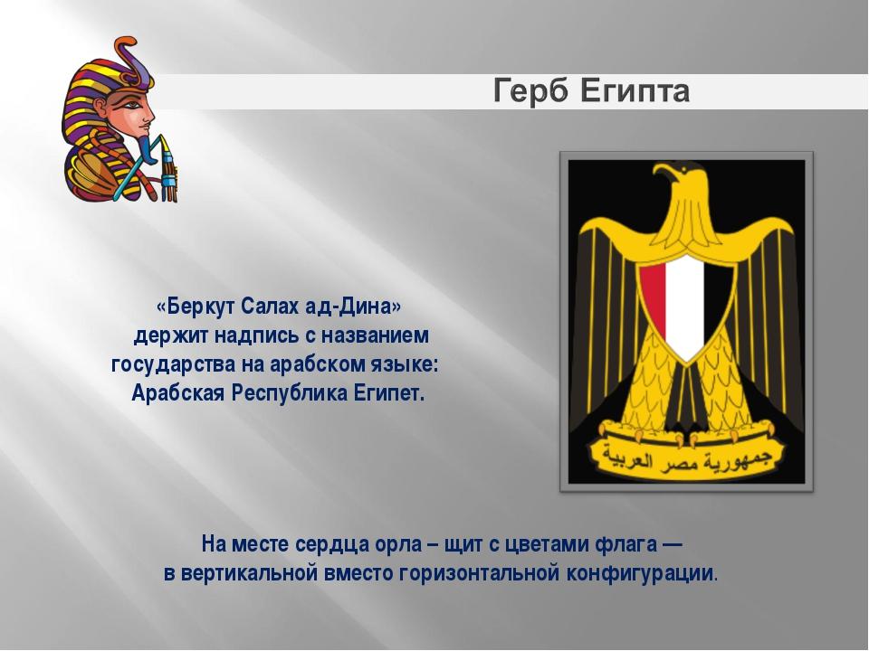На месте сердца орла – щит с цветами флага— в вертикальной вместо горизонта...