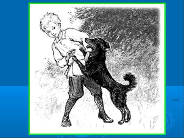 рисунок щенка и мальчика из рассказа знакомый
