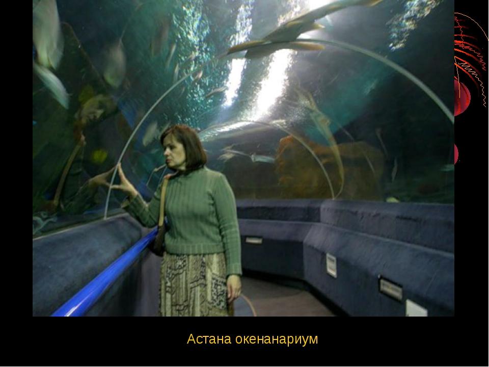 Астана окенанариум