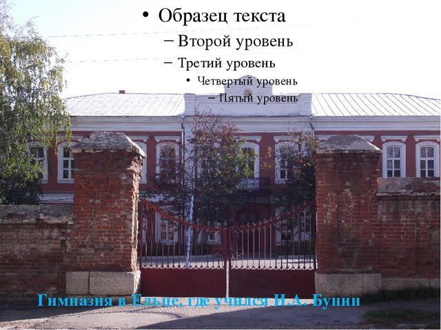 Гимназия в Ельце, где учился И.А. Бунин
