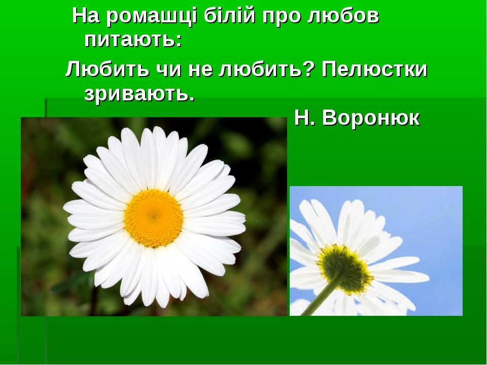 На ромашці білій про любов питають: Любить чи не любить? Пелюстки зривають....