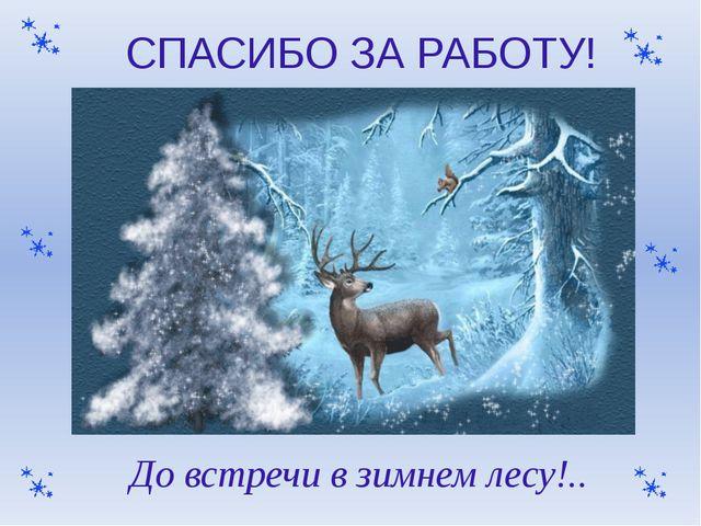 СПАСИБО ЗА РАБОТУ! До встречи в зимнем лесу!..