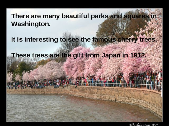 There are many beautiful parks and squares in Washington. It is interesting t...