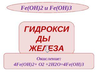 Fe(OH)2 и Fe(OH)3 Fe(OH)3 реагирует с конц. щелочами Fe(OH)3 + NaOH=NaFeO2 +