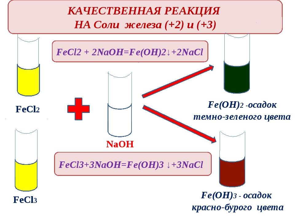 Основная роль железа в организме – участие в «рождении» красных (эритроцитов)...