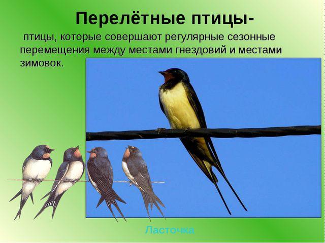 Перелётные птицы- птицы, которые совершают регулярные сезонные перемещения м...