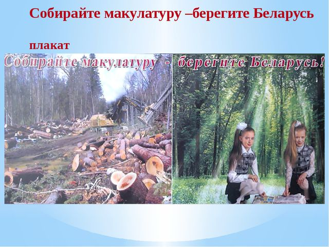 Собирайте макулатуру –берегите Беларусь плакат
