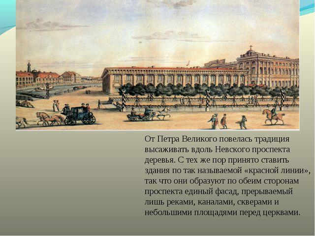 От Петра Великого повелась традиция высаживать вдоль Невского проспекта дерев...