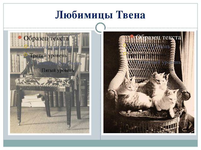 Любимицы Твена