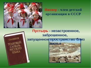 Пионер - член детской организации в СССР Пустырь - незастроенное, заброшенное