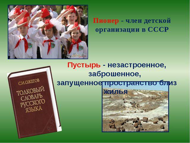 Пионер - член детской организации в СССР Пустырь - незастроенное, заброшенное...