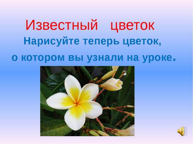 Известный цветок Нарисуйте теперь цветок, о котором вы узнали на уроке.