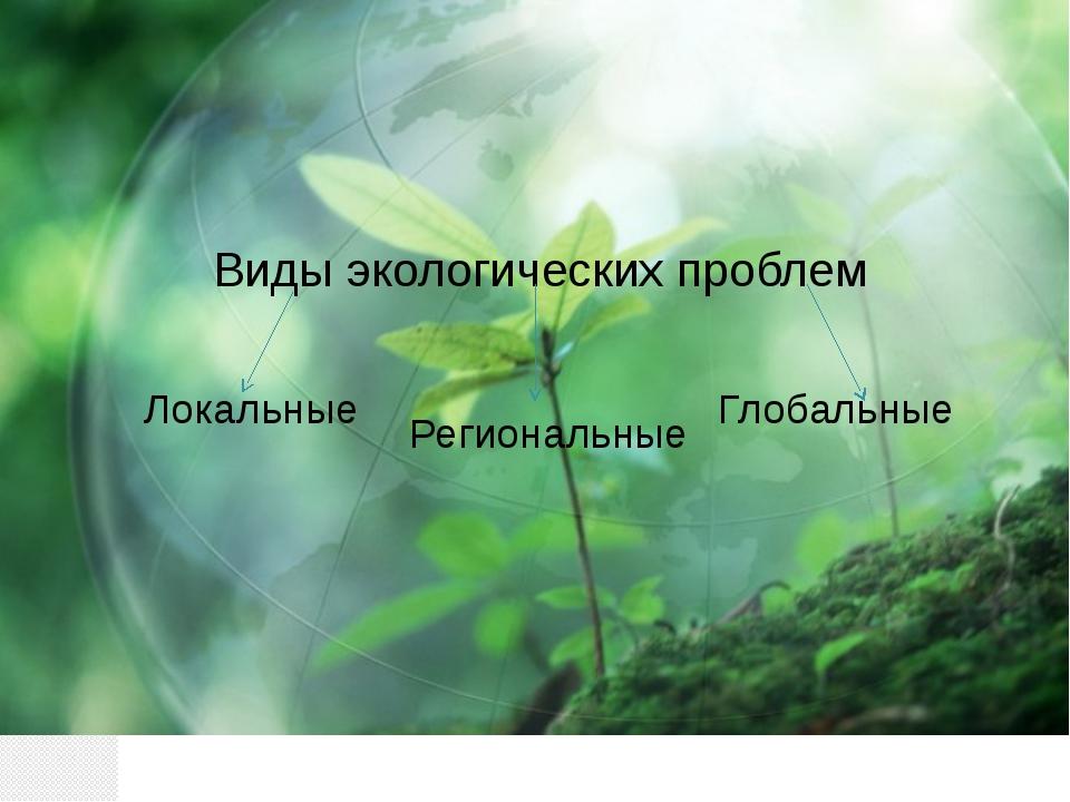 Виды экологических проблем Локальные Региональные Глобальные