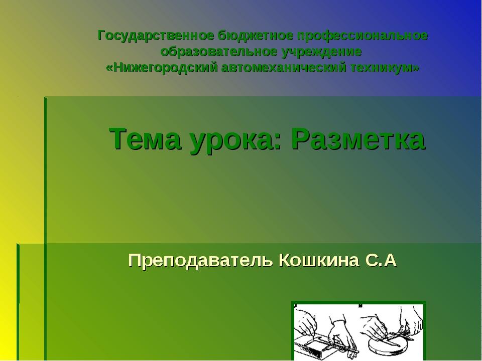 Государственное бюджетное профессиональное образовательное учреждение «Нижег...
