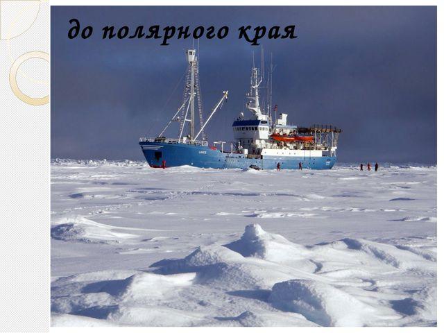 до полярного края