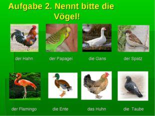 Aufgabe 2. Nennt bitte die Vögel! der Hahn  der Papagei die Gans der Spatz