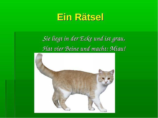Ein Rätsel Sie liegt in der Ecke und ist grau, Hat vier Beine und macht: Miau!