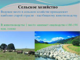 Сельское хозяйство Ведущее место всельском хозяйстве принадлежит наиболее ст