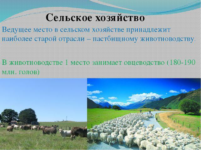 Сельское хозяйство Ведущее место всельском хозяйстве принадлежит наиболее ст...
