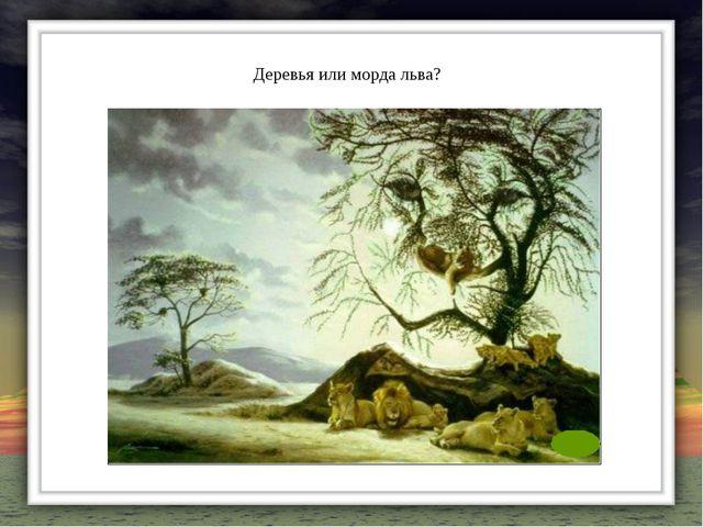 Деревья или морда льва?