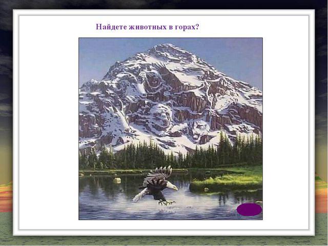 Найдете животных в горах?