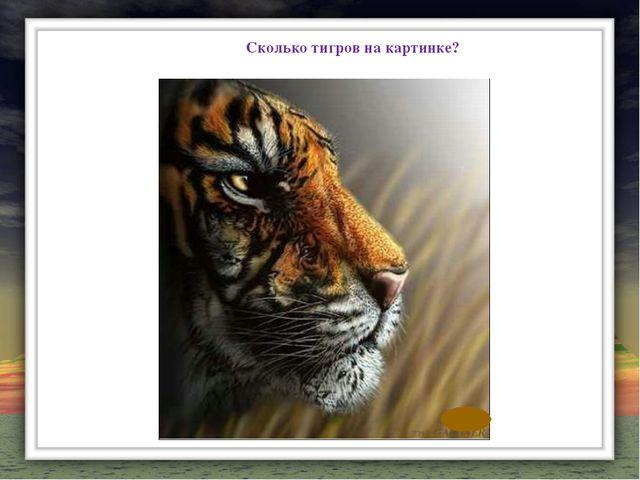Сколько тигров на картинке?