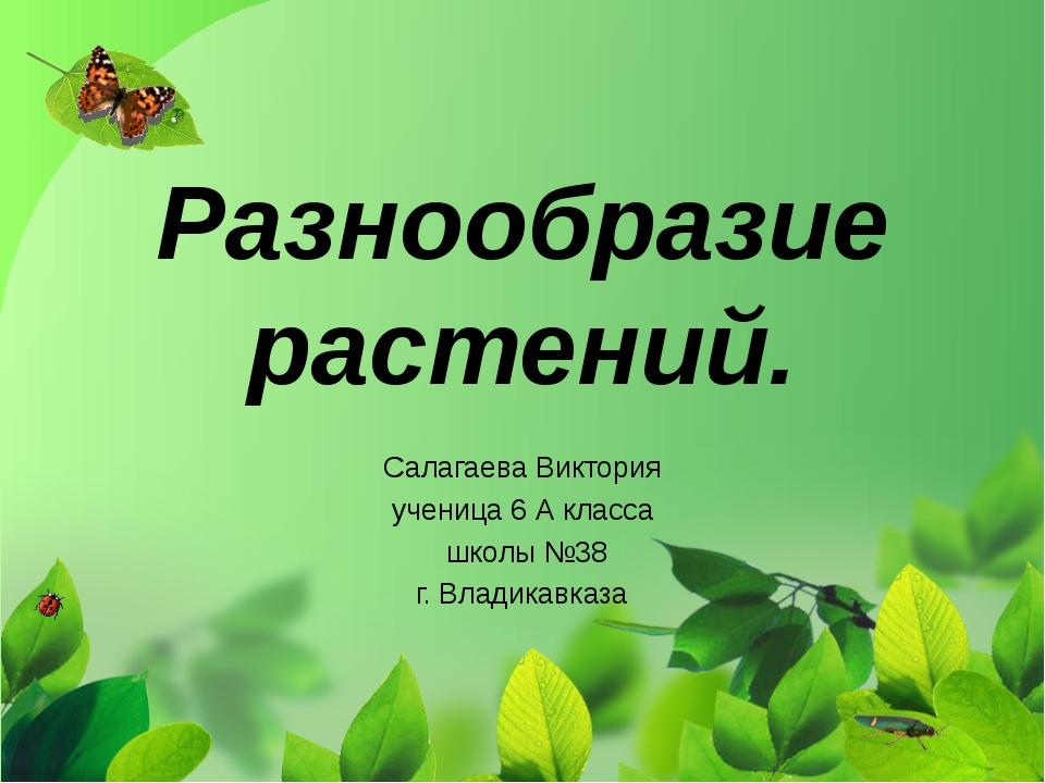 Разнообразие растений. Салагаева Виктория ученица 6 А класса школы №38 г. Вла...