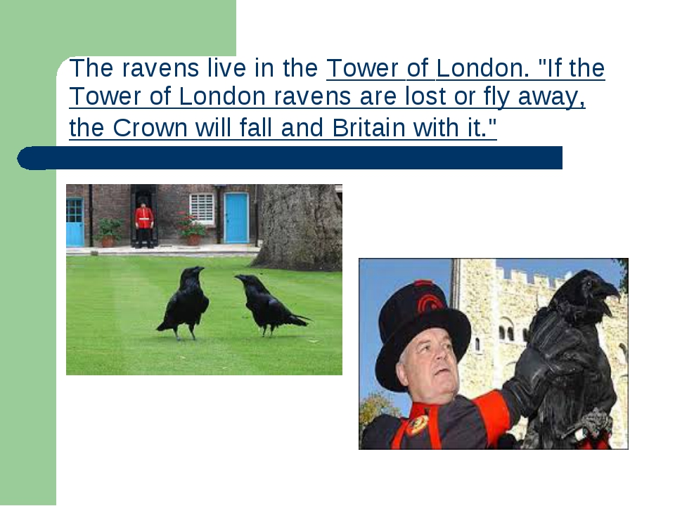 """Theravens live in theTower of London. """"If the Tower of London ravens are lo..."""