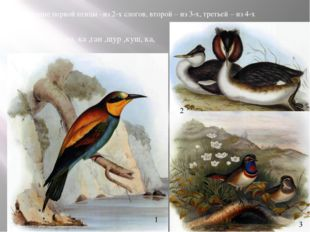 Название первой птицы –из 2-х слогов, второй – из 3-х, третьей – из 4-х по ,