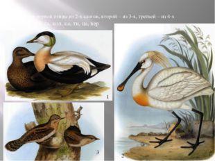 Название первой птицы из 2-х слогов, второй – из 3-х, третьей – из 4-х га, пи