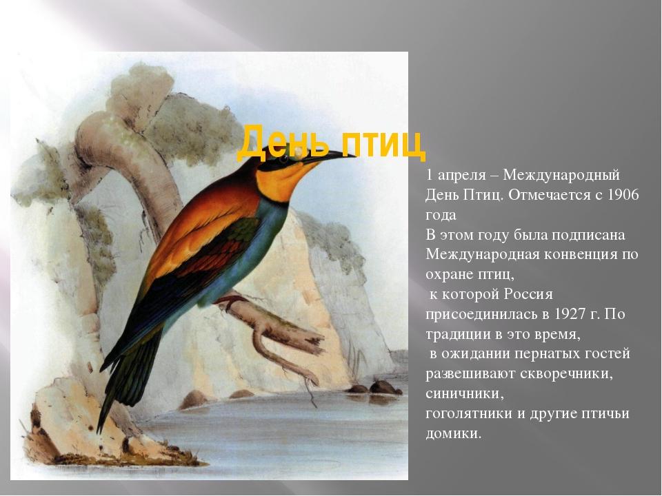 День птиц 1 апреля – Международный День Птиц. Отмечается с 1906 года В этом г...