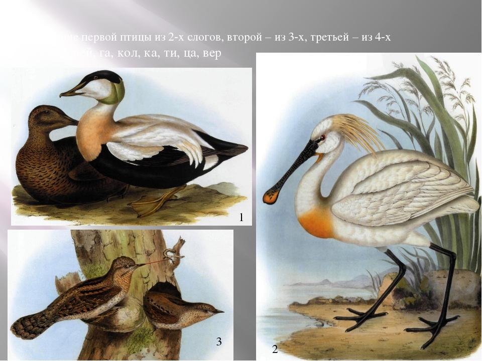 Название первой птицы из 2-х слогов, второй – из 3-х, третьей – из 4-х га, пи...