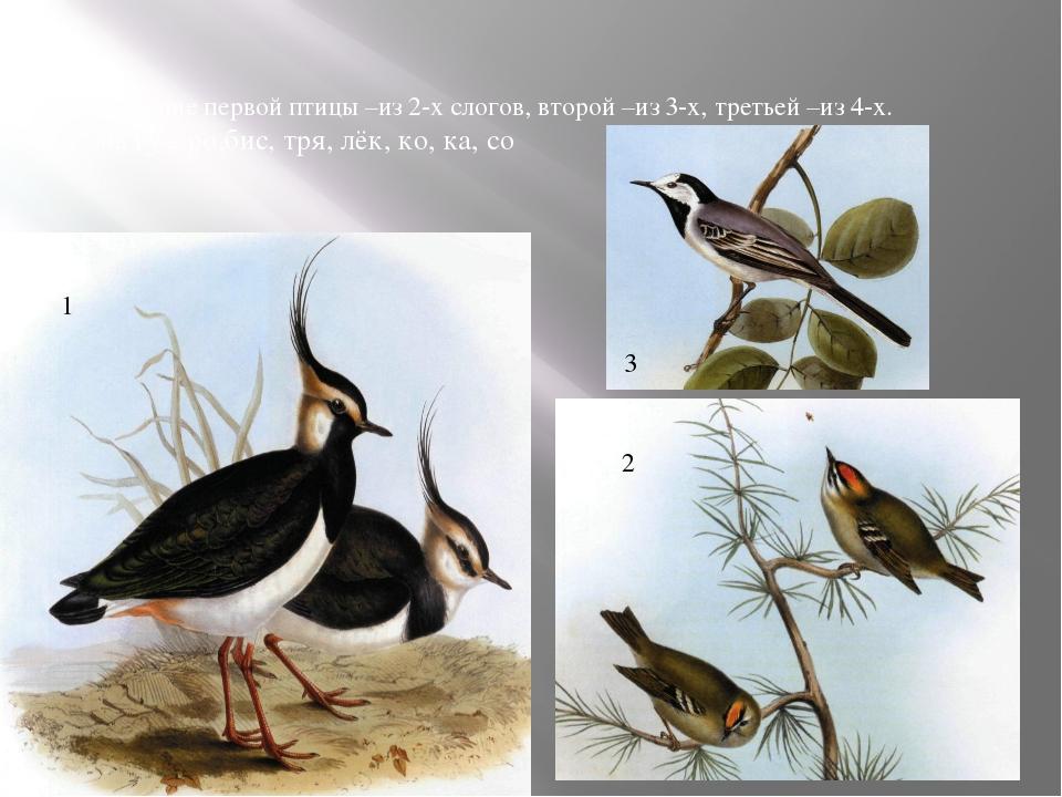 Название первой птицы –из 2-х слогов, второй –из 3-х, третьей –из 4-х. чи, гу...