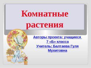Комнатные растения Авторы проекта: учащиеся 7 «Б» класса Учитель: Балтаева Гу