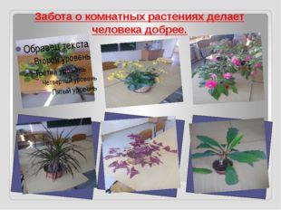 Забота о комнатных растениях делает человека добрее.