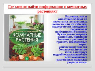 Где можно найти информацию о комнатных растениях? Растения, как и животные, б