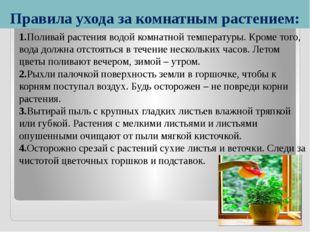Правила ухода за комнатным растением: 1.Поливай растения водой комнатной темп