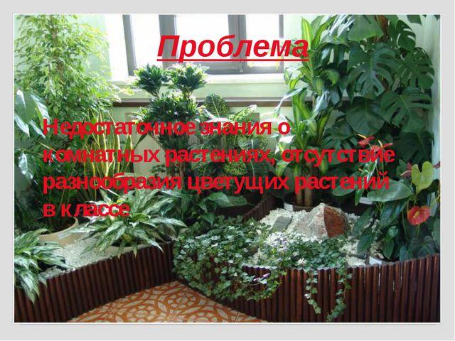 Проблема Недостаточное знания о комнатных растениях, отсутствие разнообразия...
