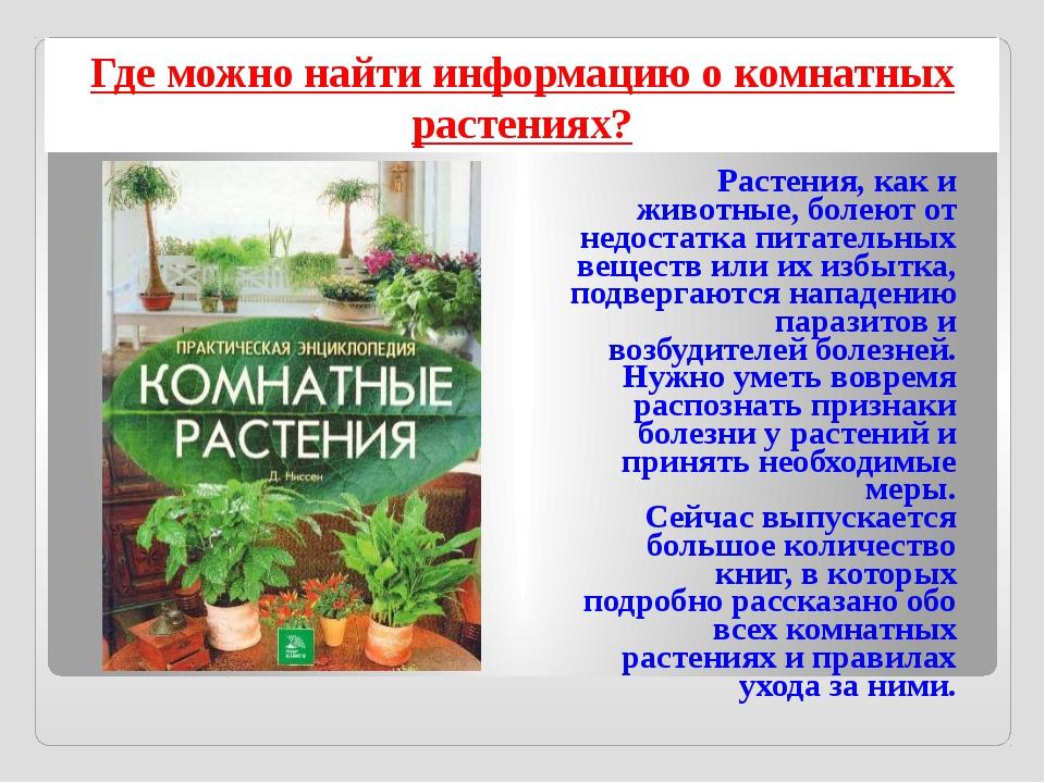 Где можно найти информацию о комнатных растениях? Растения, как и животные, б...
