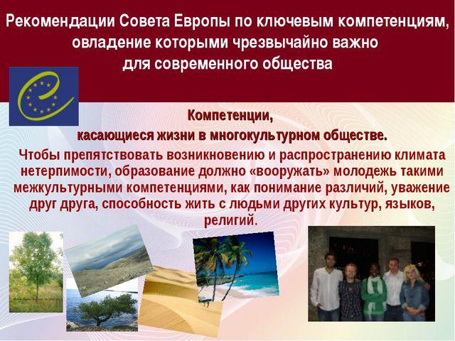 Рекомендации Совета Европы по ключевым компетенциям, овладение которыми чрезв...