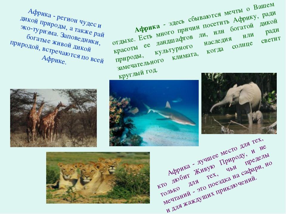 Африка - здесь сбываются мечты о Вашем отдыхе. Есть много причин посетить Аф...