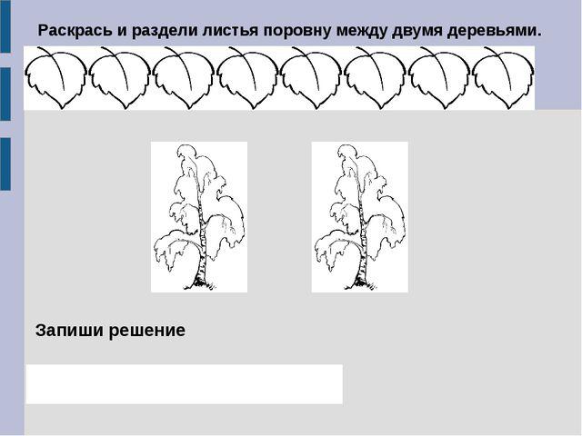 Раскрась и раздели листья поровну между двумя деревьями. Запиши решение