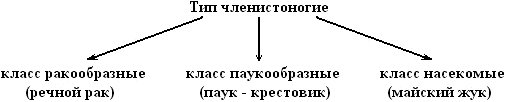 hello_html_3b23f442.jpg