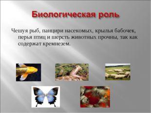 Чешуя рыб, панцири насекомых, крылья бабочек, перья птиц и шерсть животных пр