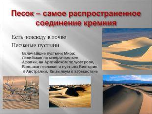 Есть повсюду в почве Песчаные пустыни Величайшие пустыни Мира: Ливийская на с