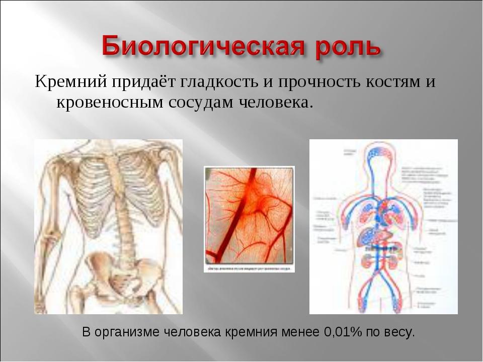Кремний придаёт гладкость и прочность костям и кровеносным сосудам человека....