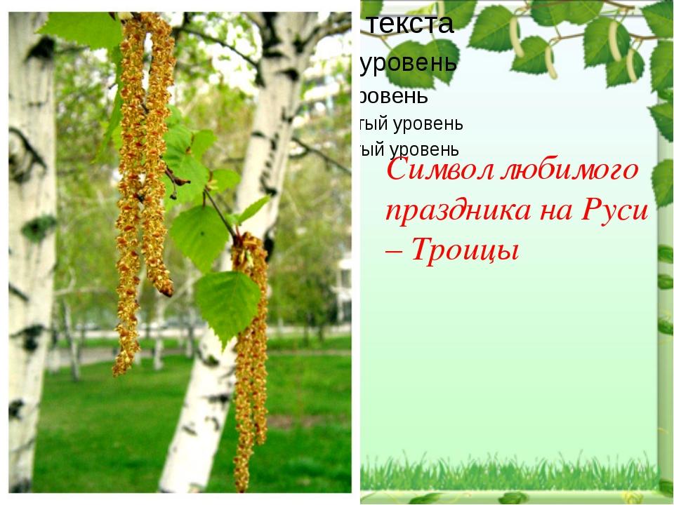 Символ любимого праздника на Руси – Троицы