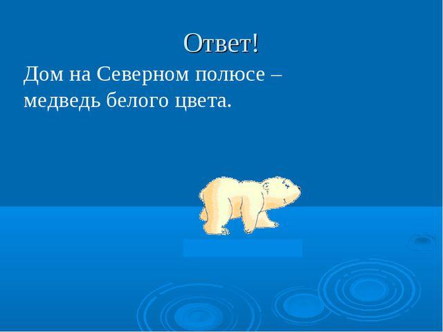 Ответ! Дом на Северном полюсе – медведь белого цвета.
