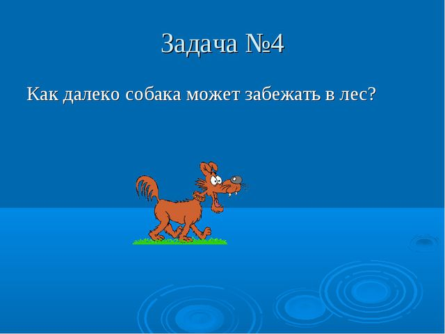 Задача №4 Как далеко собака может забежать в лес?