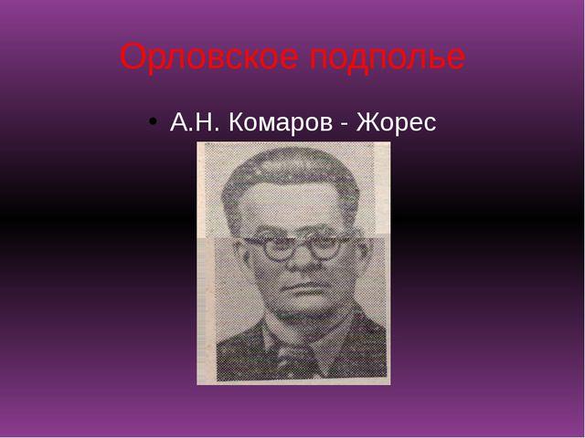 Орловское подполье А.Н. Комаров - Жорес